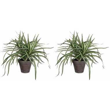 2x stuks dracaena kunstplanten groen in grijze pot h34 cm x d40 cm