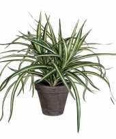 Dracaena kunstplant groen in grijze pot h34 cm x d40 cm