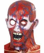 Halloween anatomisch horror masker